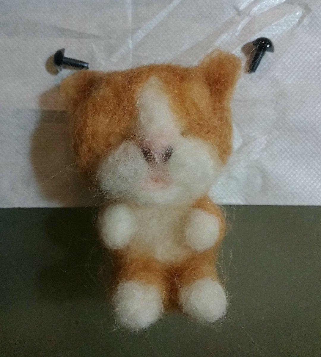 test ツイッターメディア - リアル猫を夢見て付属品の目パーツではなくキャットアイを購入。早速辺りを付けてみたら………ナニコレ感が半端ない(´Д⊂ヽイキアタリバッタリヨクナイ  どう調整するか悩みつつ、尻尾パーツを先に制作。悔しいので尻尾は針金入りにして曲がるようしてやる! #羊毛フェルト #猫 #ダイソー https://t.co/ra4RoS8hP1