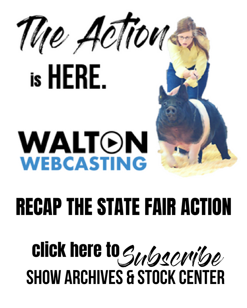 Walton webcasting waltonwebcast twitter recap the state fair action with walton webcasting click to subscribe to our show archives junglespirit Gallery