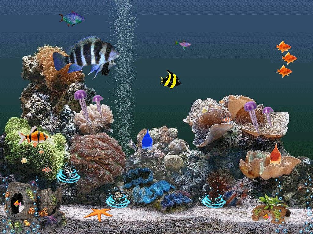 Анимация аквариум картинки на телефон
