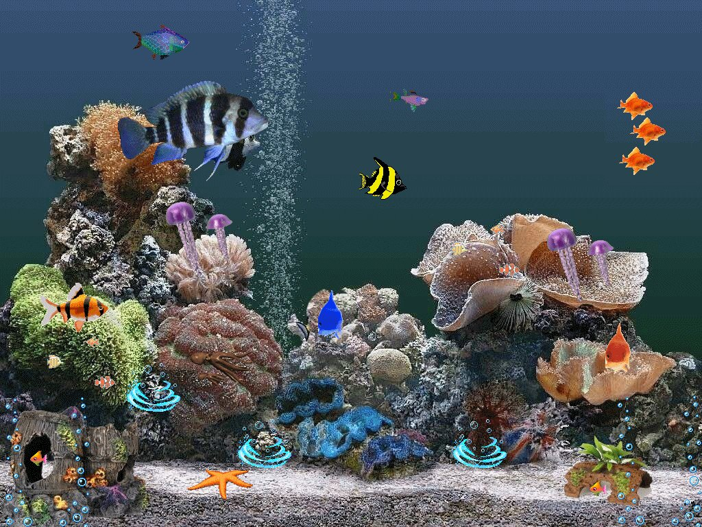 Картинка на рабочий стол аквариум анимация, улыбкой прикольные