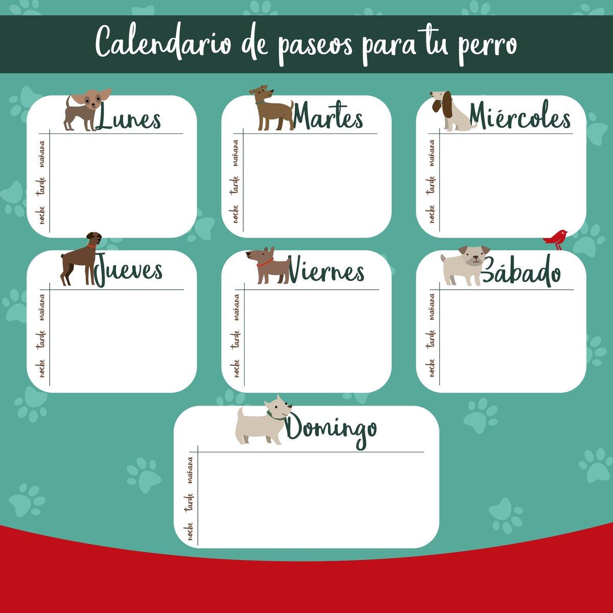 Alcampo Calendario.Alcampo على تويتر Toca Sacar A Pasear Al Perro Y No