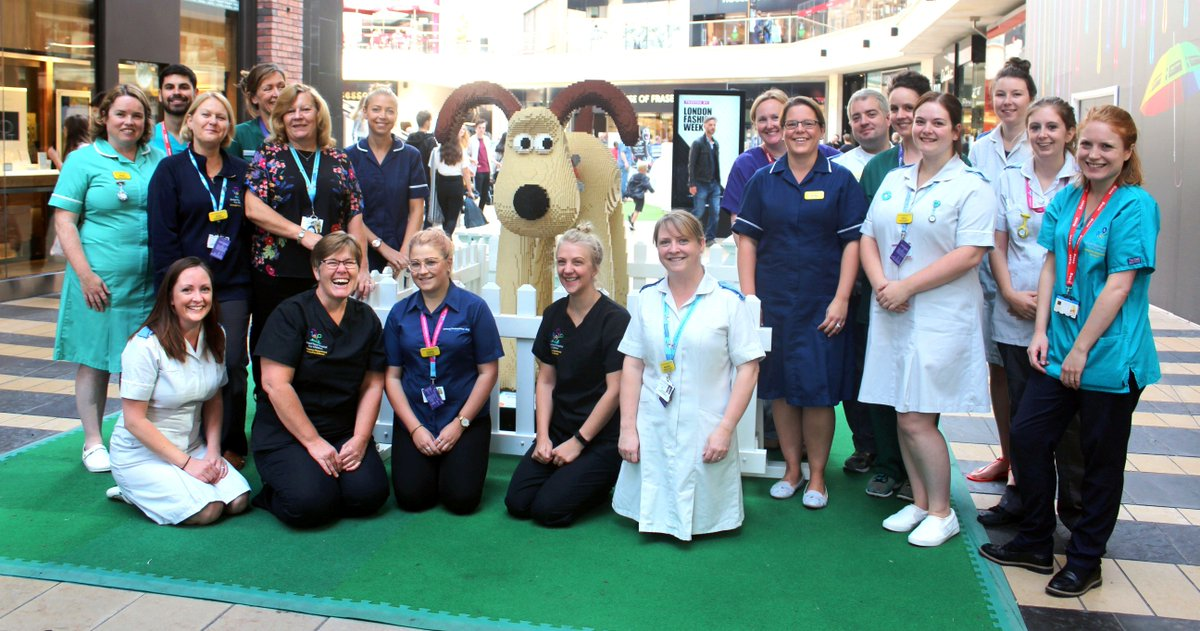 Some Of The UHBristolNHS Emergency Department Team For A Terrific Trail Selfie With Their Sculpture Cracking Build Gromit Down At CabotCircus