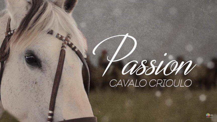 SBT Santa Catarina produz documentário que destaca a vida dos apaixonados pelo Cavalo Crioulo #AcontecendoAqui #sbt #sbtsc #sbtsantacatarina #santacatarina #sc  http://acontecen.do/1h6y