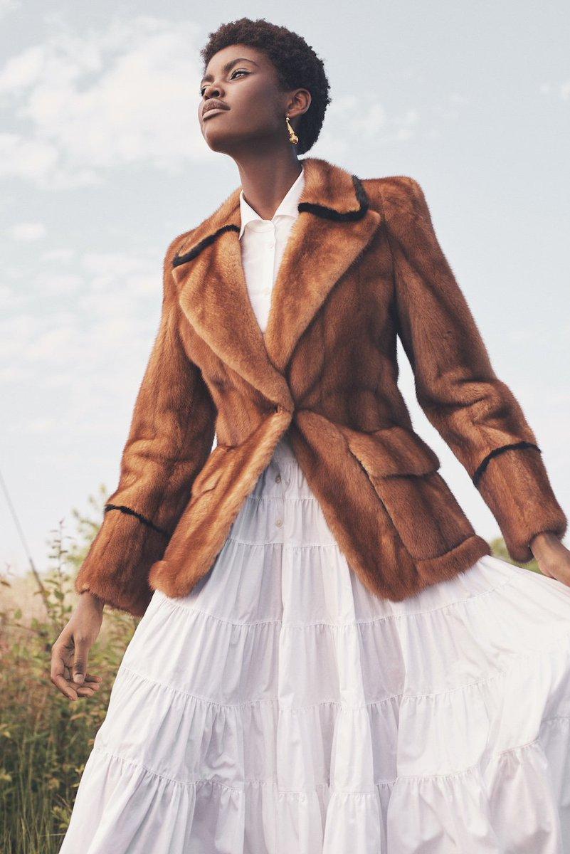 Rideau Brown Furs (@RideauBrownFurs) | Twitter