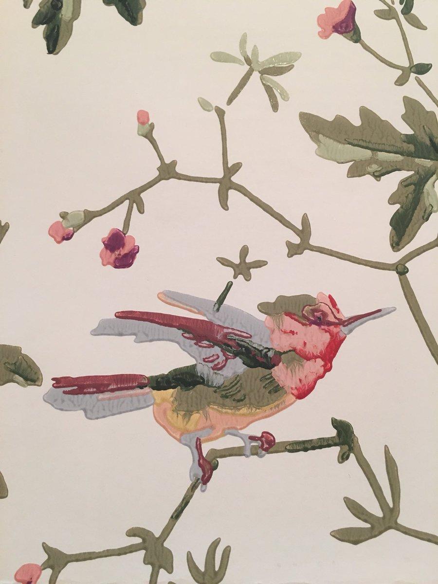 Imella Design On Twitter Detail Of At Coleandson Hummingbirds