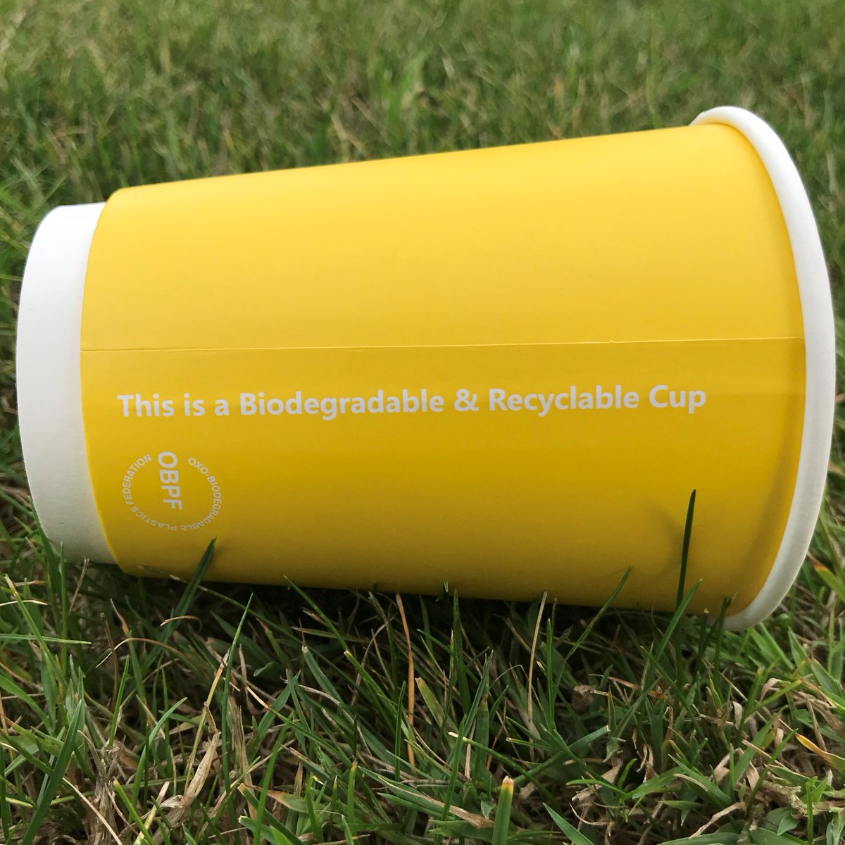 Did you know our new take away cups are biodegradable & can go in the compost bin? While the lids can go in recycling bin once they have been washed ♻️ This is part of Tifco Hotel Group's (@tifcohotels) commitment to cutting back on single use plastic #EcoTifco #uselessplastic https://t.co/3F4Sg7mhFf