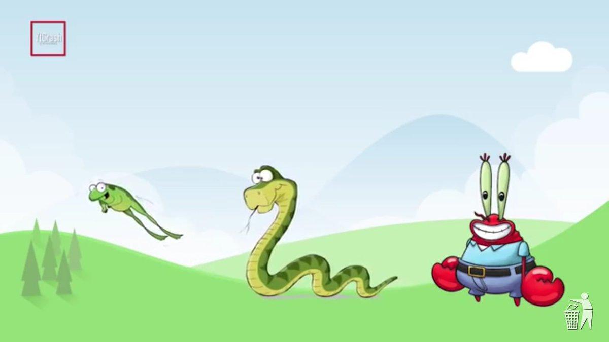 Yaoixdorm Twitter Profile Twipu Kaos Snake Ular Animal