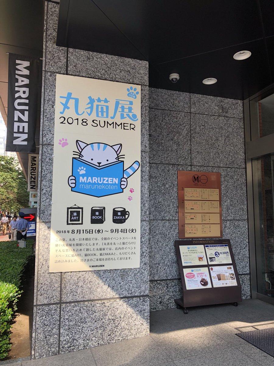 """岡島なつみ on Twitter: """"本日も..."""