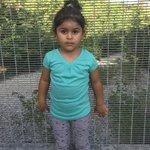 #KidsOffNauru Twitter Photo