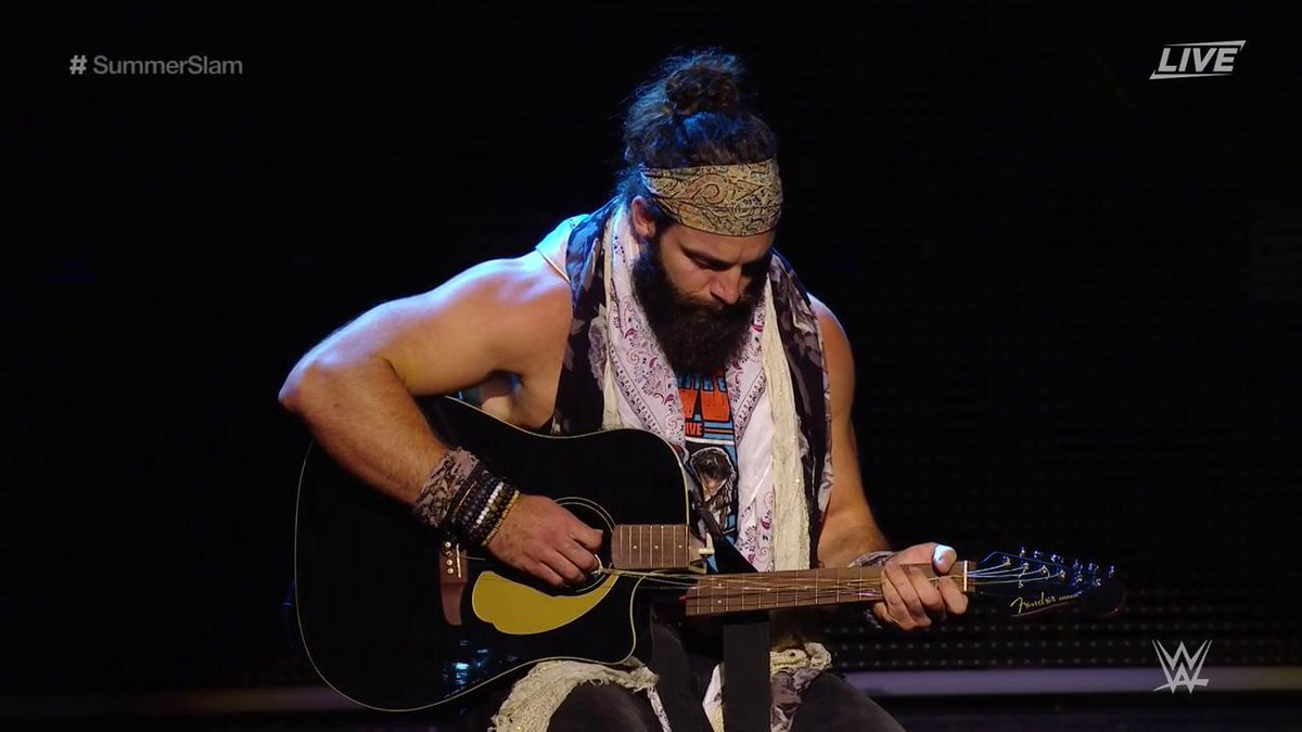 Image result for elias guitars two wwe