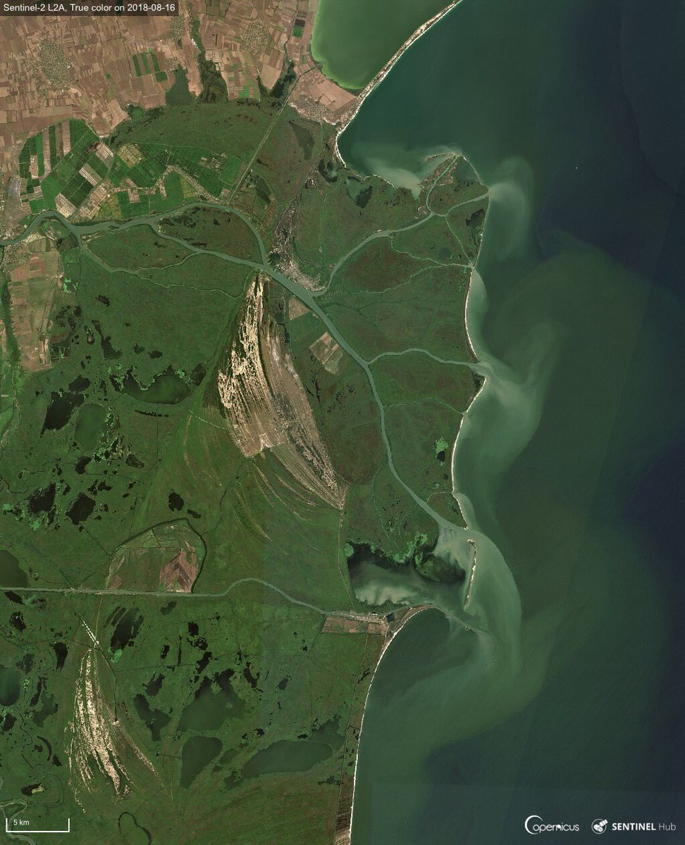 &quot;The Blue Danube&quot; &quot;An der schönen blauen Donau&quot; &quot;Le beau Danube bleu&quot; In its delta, the longest river in the #EU isn't as blue as in Johann's Strauss waltz, as it carries sediments from its 2860 km journey into the Black Sea.  #Sentinel2  #OpenData images from 16 August<br>http://pic.twitter.com/3Qj6arWpIr