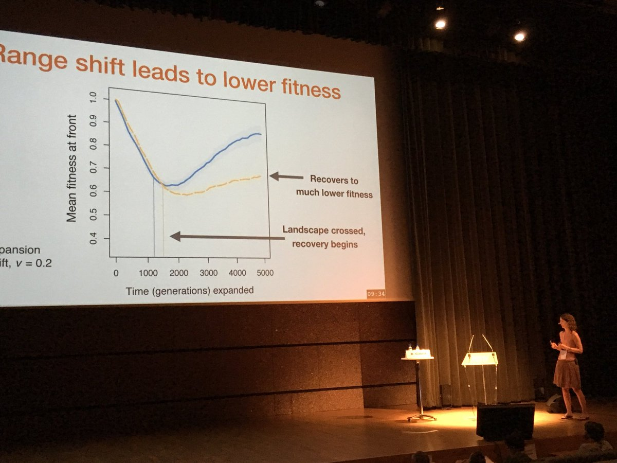 @kj_gilbert providing excellent example of why we need to contrast genetic impacts of range shifts with those for invasion dynamics. Shifts lead to more load and slower recovery. #evol2018<br>http://pic.twitter.com/sQbj8AjQNr