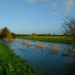 Hope the waters will be a bit lower for Wednesdays walk.