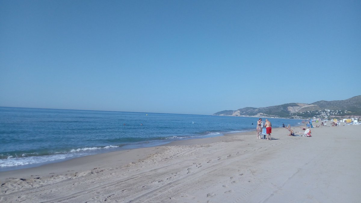 Estat de la #platjadecastelldefels aquest dilluns 20 dagost. Bandera: verda Mar: plana Qualitat de laigua: bona Temperatura de laigua: 25 graus Temperatura ambient: 32 graus Índex uv: 7 Hi ha meduses: poques (Rhizostoma pulmo) +INFO: platjadecastelldefels.org