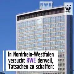 """Im #HambacherForst will @RWE_AG die Motorsäge ansetzen: Rodung sei """"zwingend erforderlich"""". Während der Kohleausstiegs-Verhandlungen Tatsachen schaffen? Nein! Die Zukunft ist #kohlefrei!  >>> https://t.co/guSmw2NnR1 #klimawandel #klimaschutz"""