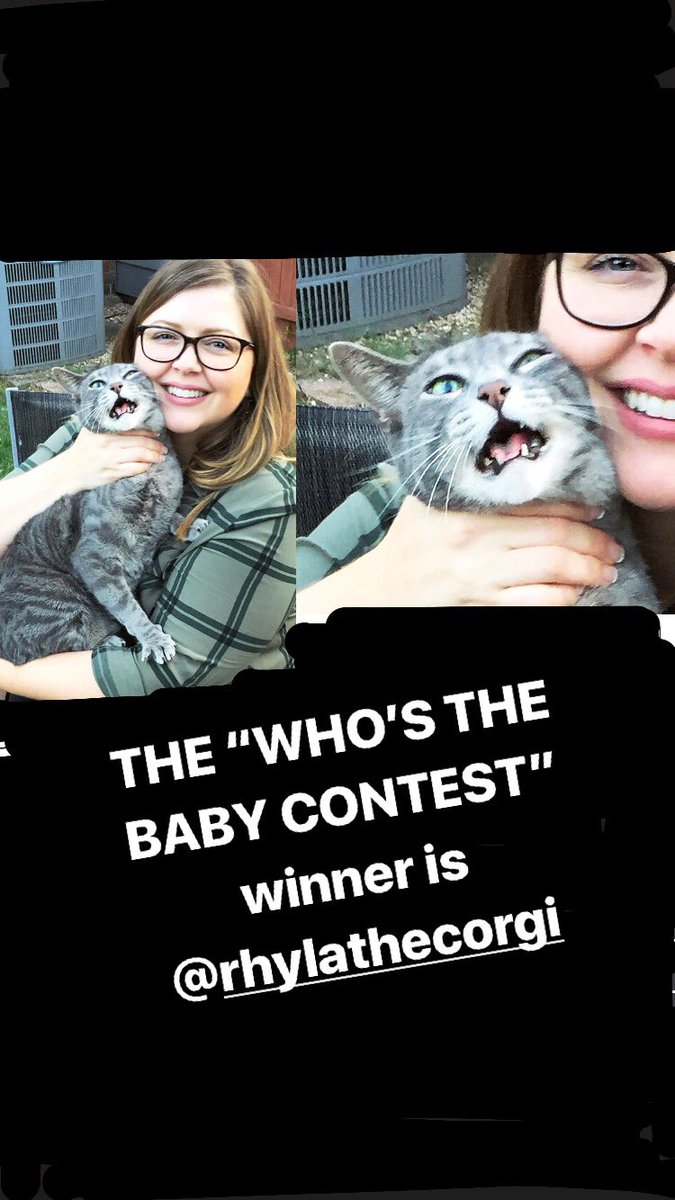Our winner is @rhylathecorgi 👏 All babies were judged in resistance, face display, panic/acceptance behind the eyes. Our runners up are in my insta story. Thank you for playing #whosthebaby and I hope to see you all on my #eldermillennialtour with Blanche