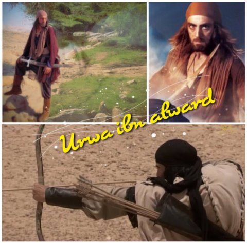 Urwa ibn al-Ward