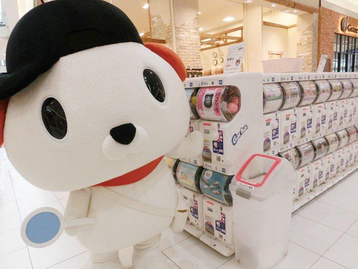 test ツイッターメディア - ☆ #はっ犬ワンドゥ冒険にっき ☆ 8月20日(月)イオンモール姫路大津店に、キャンドゥイメージキャラクターの #はっ犬ワンドゥ が冒険にいきました! ハロウィン商品がたーくさん!冒険中に気になるガチャガチャもはっけん!したみたい♪ 次回の冒険もお楽しみに☆彡 #キャンドゥ #100均 https://t.co/7MCa0DQnrN