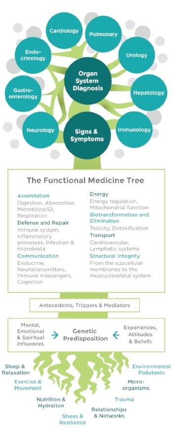 epub Manual of Temporomandibular Disorders