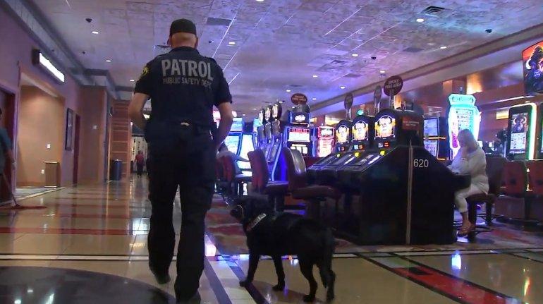 Pechanga casino security philadelphia casino bensalem pa