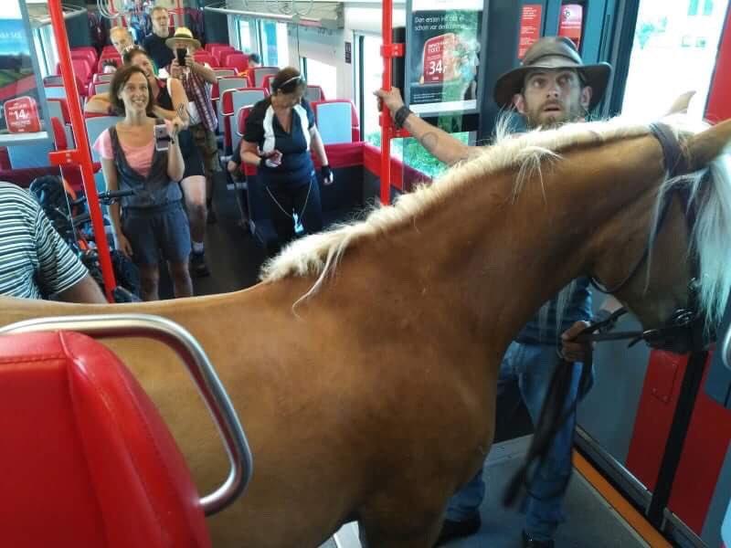 Autriche: il monte dans le train avec son cheval