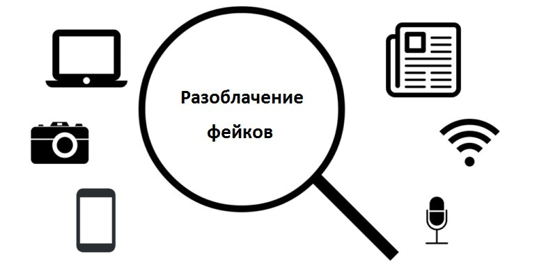 apoloperfumeria.com