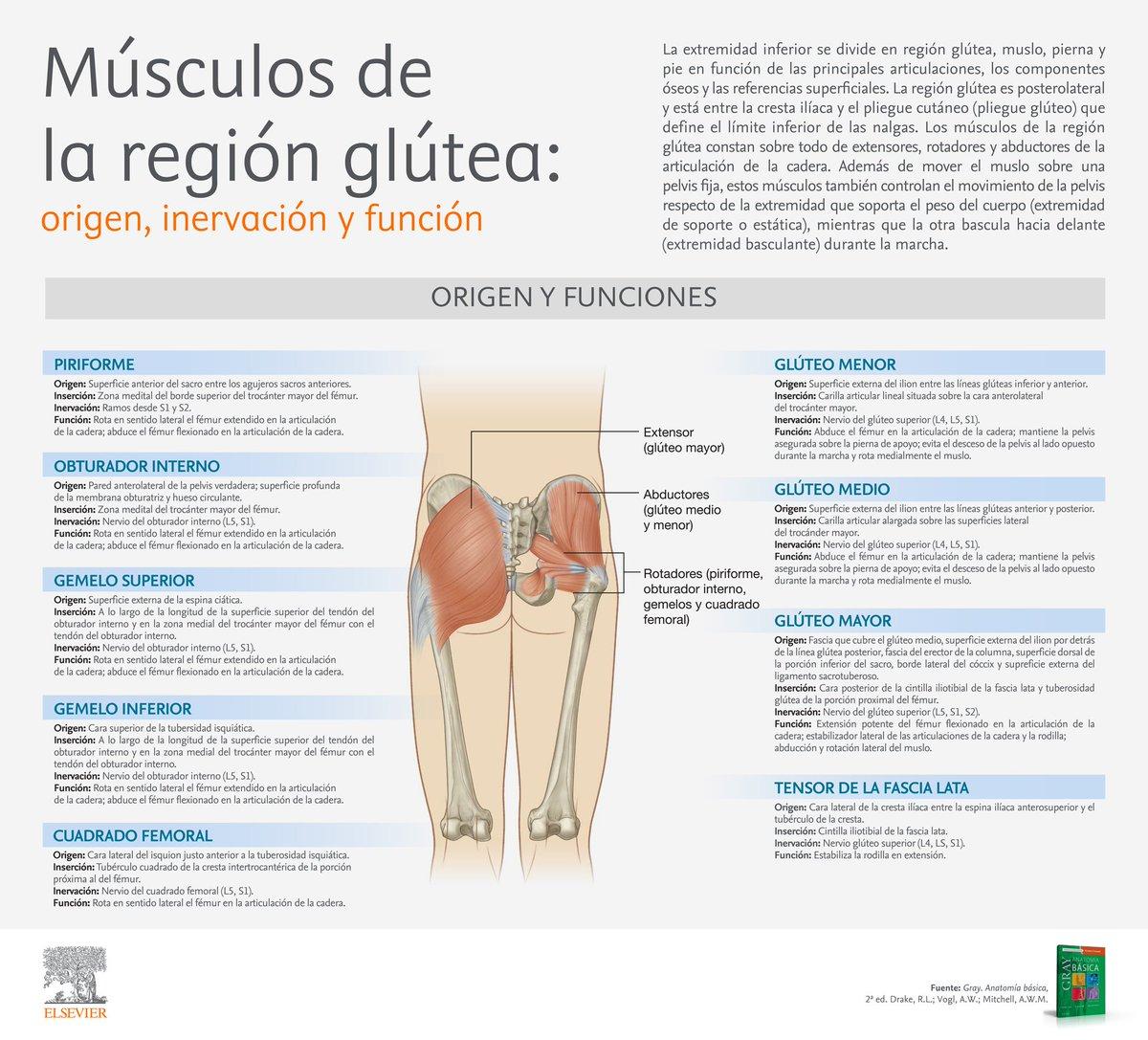 Actualidad Medicina on Twitter: \