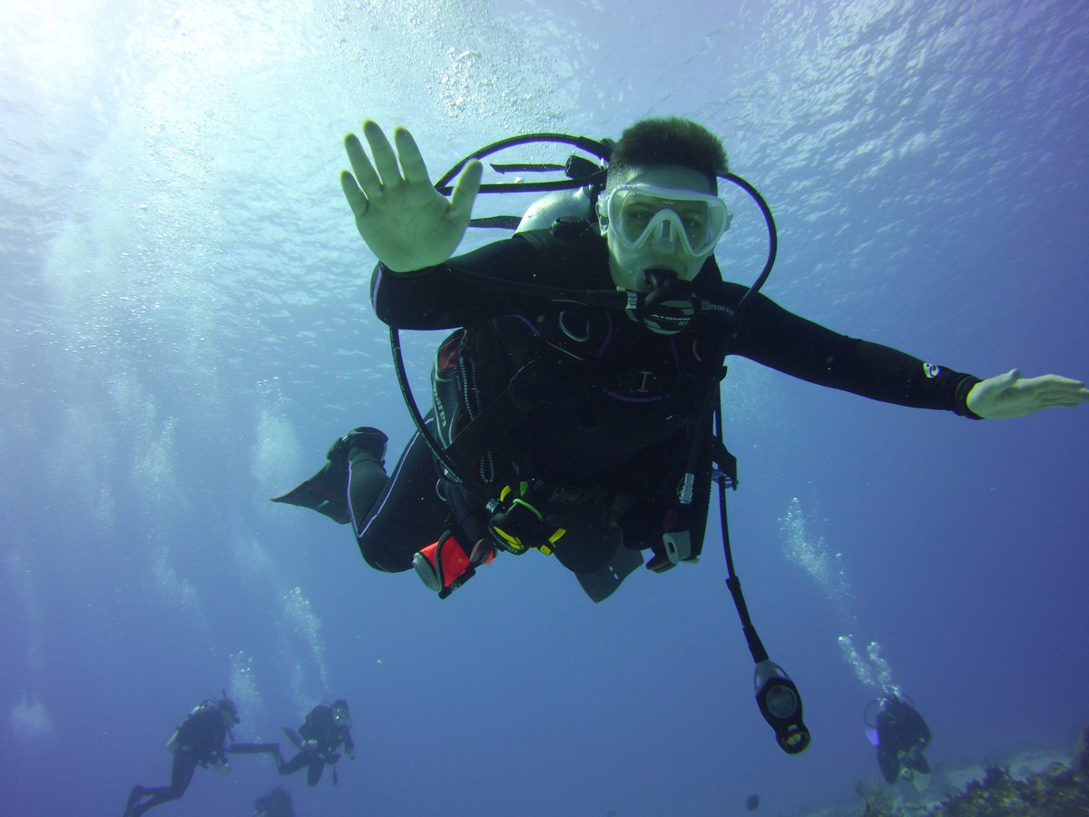 How is freediving different than scuba? https://t.co/94tBWxHDUp #freediving #scubadiving #scuba #diving #swimmimng #snorkeling #breathhold #divedeep https://t.co/nRVtWymkn8