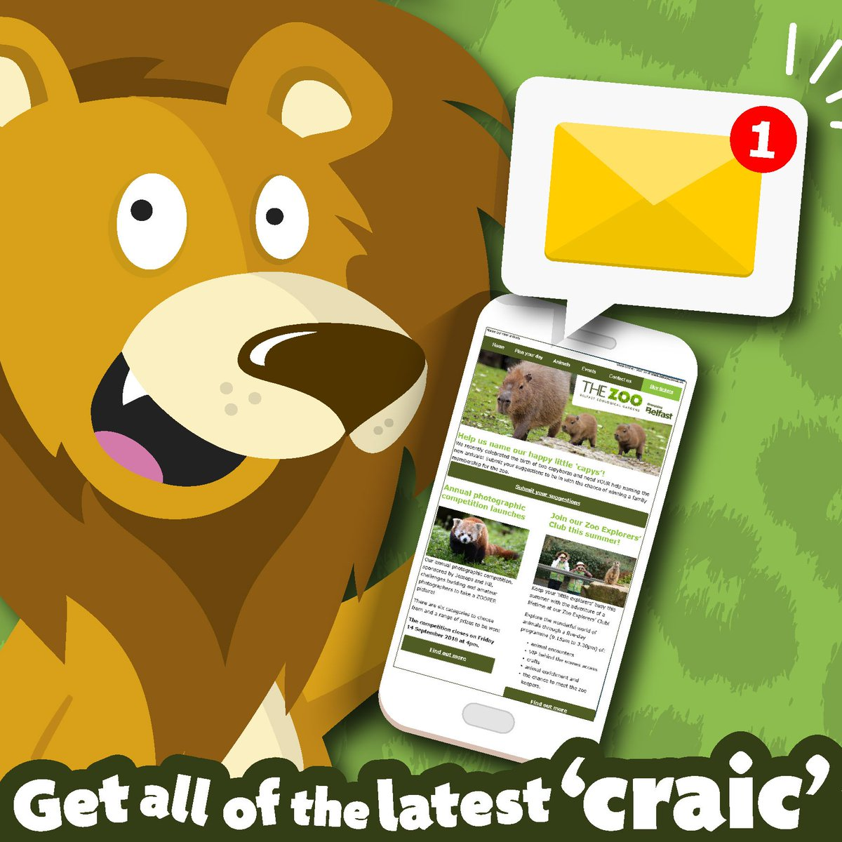 You Will Be Among To First Find Out All Of The Latest Zoo Craic And Keep Up Date With Your Favourite Animalvisit Owly 2fqX30llDSX