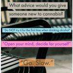 Image for the Tweet beginning: #cannabistalks #newbie #advice #cannabis #cannabistalks