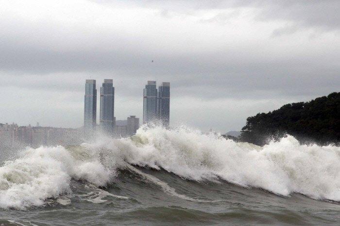 [태풍 솔릭 피해]  재난 영화 장면이 아닙니다. 현재 부산, 제주도 등지 실시간 상황입니다.   기사보기: https://t.co/j7c7b6owLs