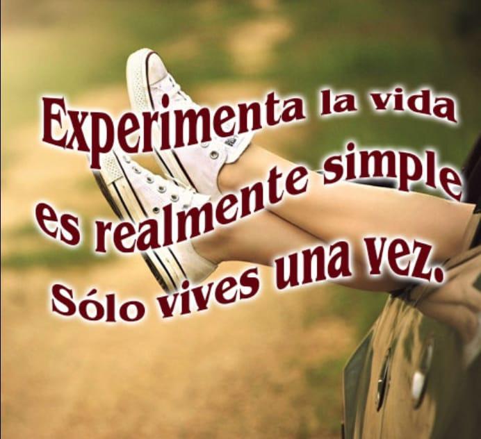 """Resultado de imagen de experimenta la vida es realmente simple solo vives una vez"""""""