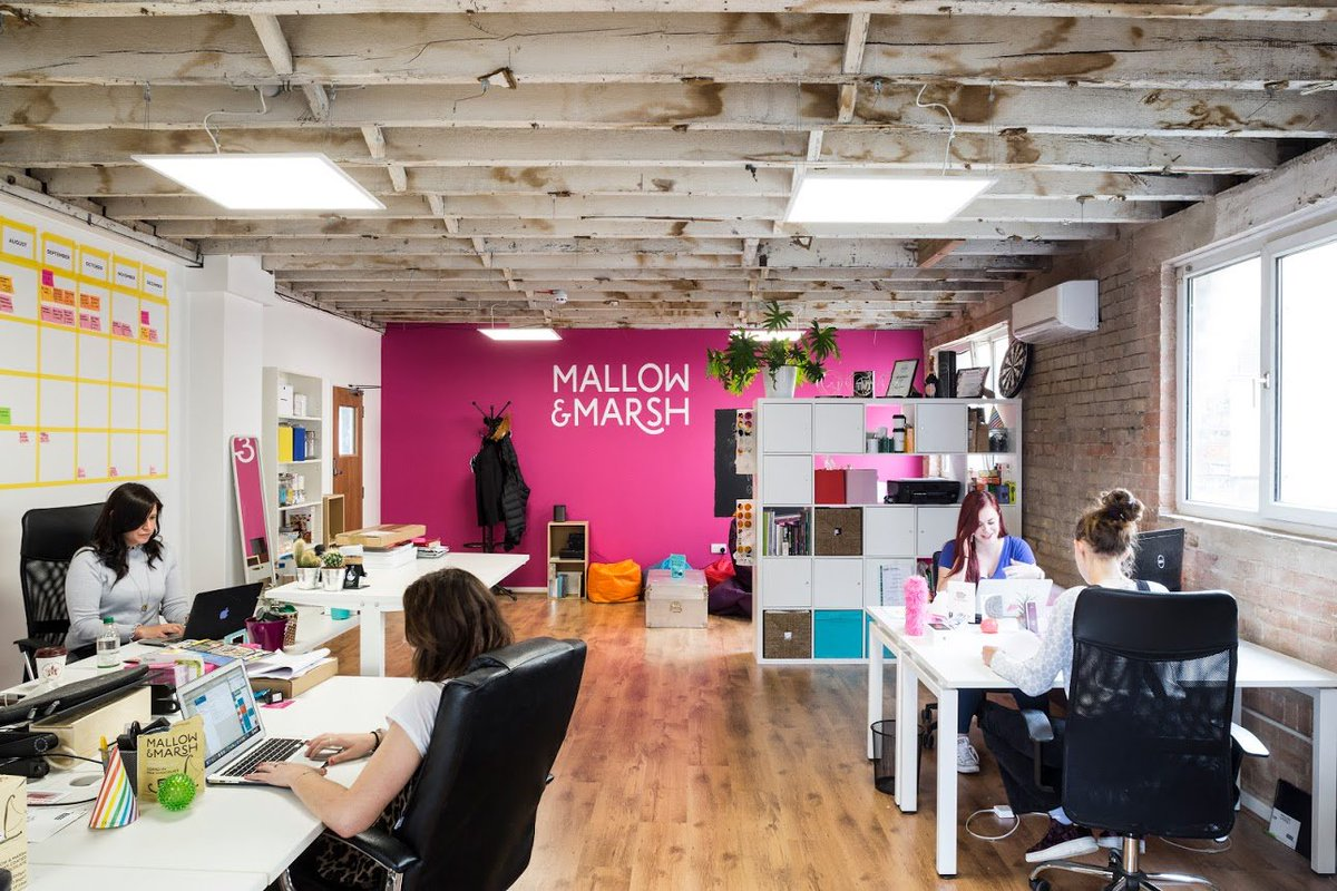 It's fab to see that even a quick chat between #CollectiveMembers can mean that members can help each other to grow and succeed! Have a read of our blog to find out how @MallowandMarsh helped @OneThirdStories with Dragon's Den prep #notjustaworkspace https://t.co/nWDL91qZfj https://t.co/rz7R1P1Y1r