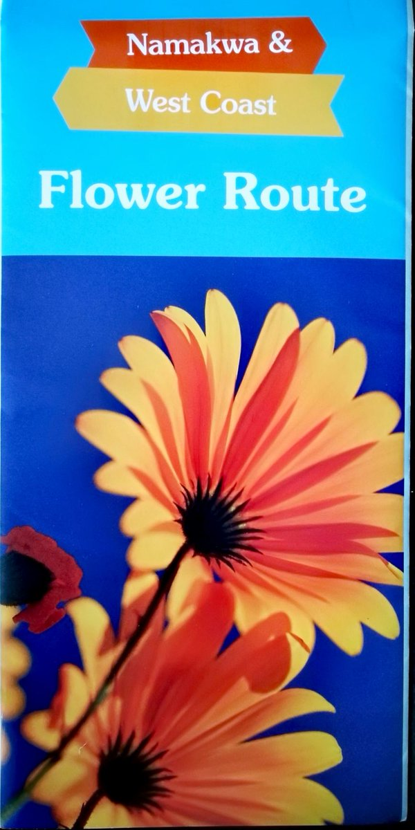 book Philosophical Grammar