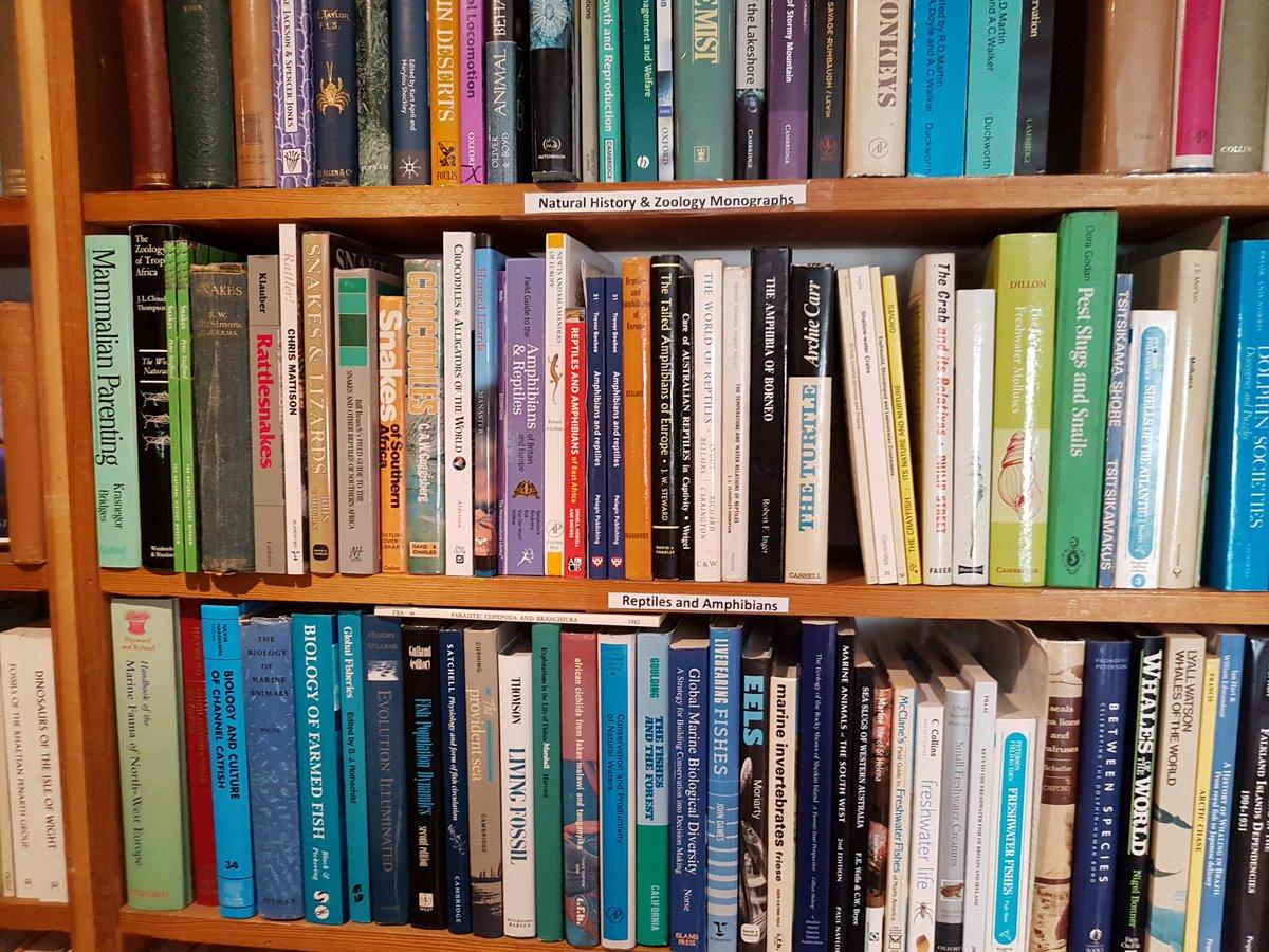 download Studies in the Philosophy