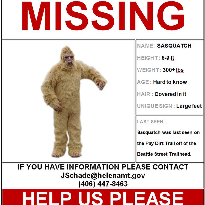 This is why we can't have nice things. Somebody stole Sasquatch from the Mount Ascension trail system.