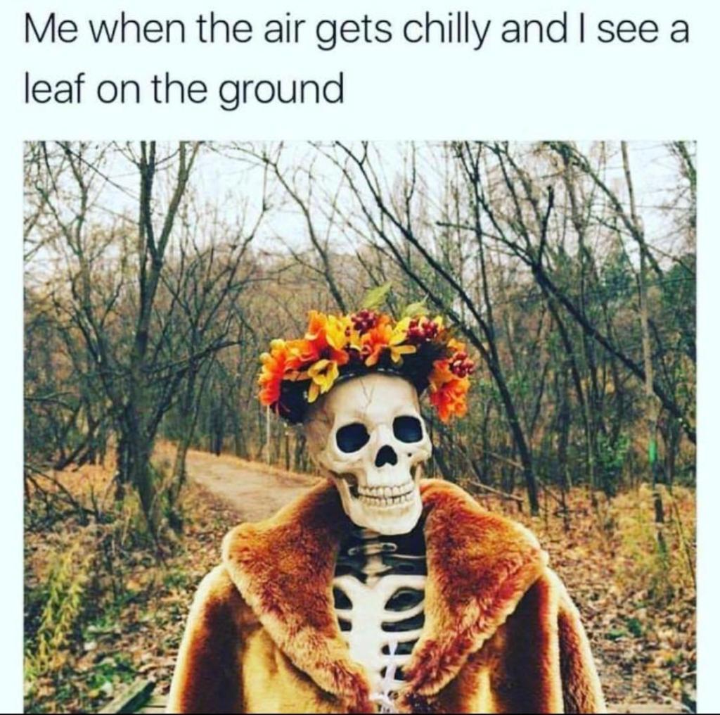 Replying to @SpiritHalloween: Retweet if #fall is your favorite season!