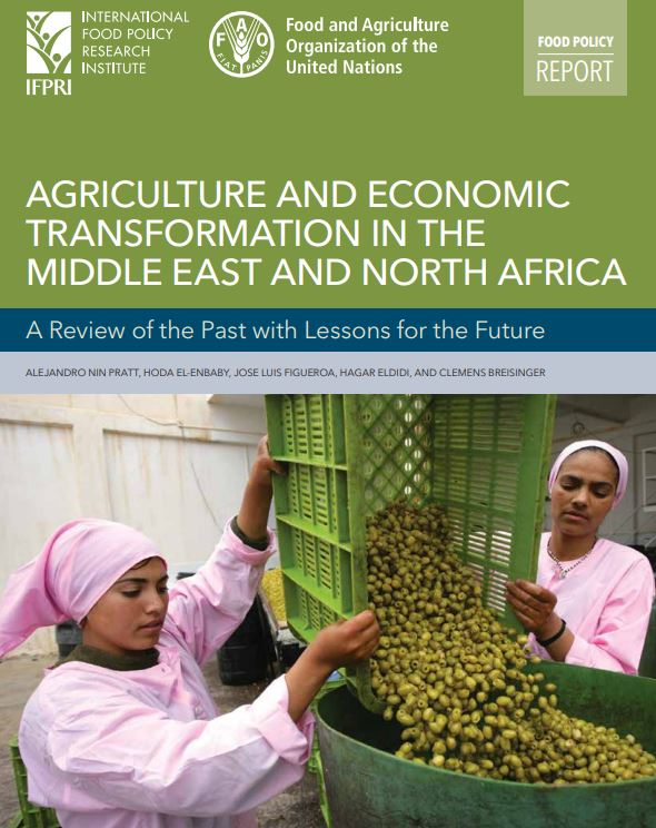 Unlocking the potential for agricultural development in the Middle East and North Africa