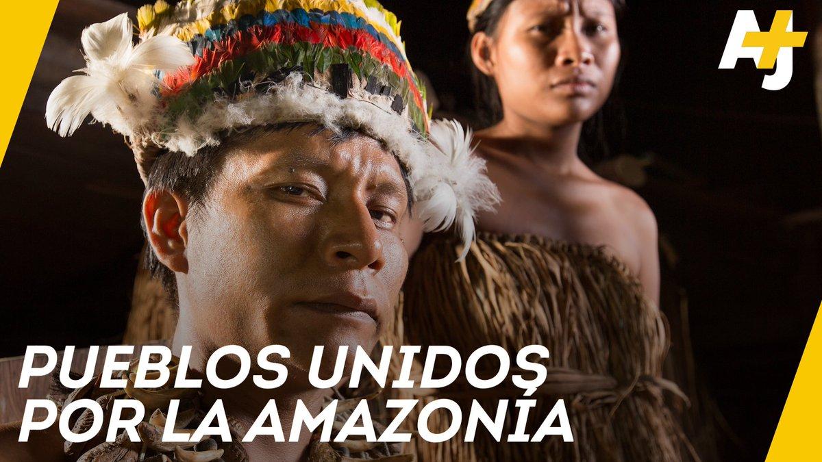 ¿Quiénes protegen a la Amazonía? Los pueblos indígenas.El año pasado, 400 de ellos se unieron y crearon un corredor ambiental para salvar la mayor selva tropical del mundo. #AmazonasSOS