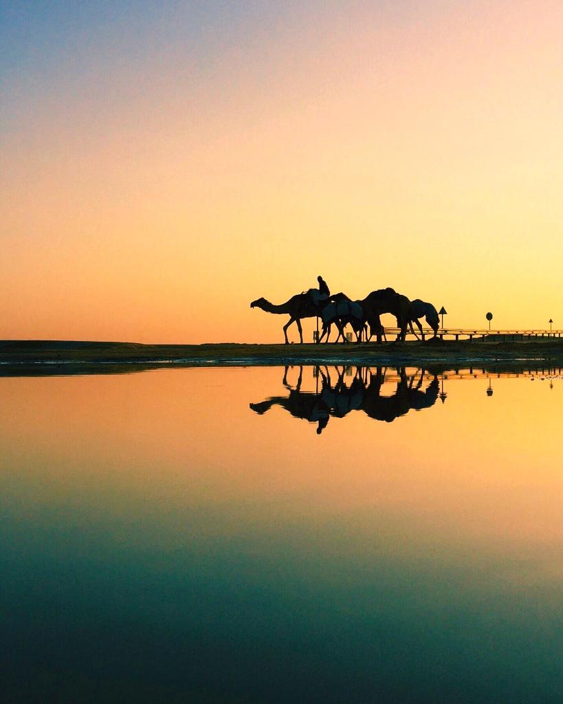Is it a mirage or reality? The transition between water and sand. #InAbuDhabi  Great shot of Liwa Desert by Nasser 📷