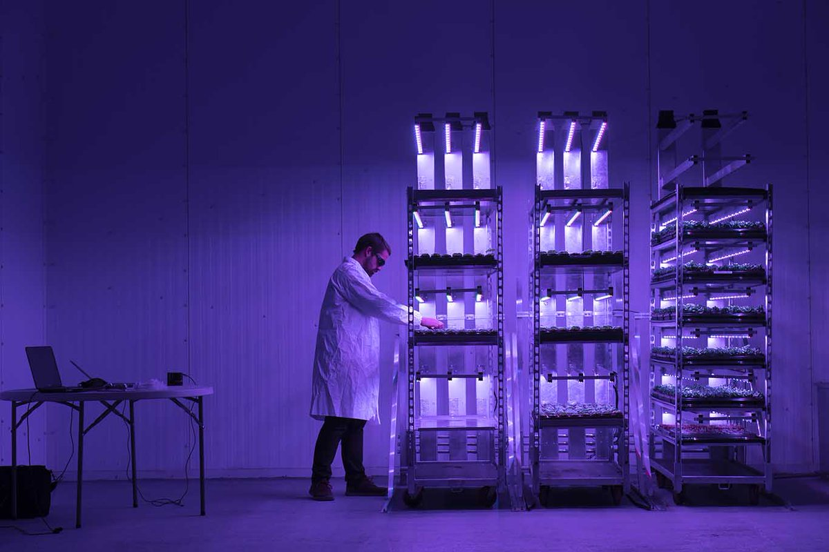 bce87db18b5 ...  JamesHuttonInst to shoot the launch of  IntelligentGS s futuristic  vertical farm