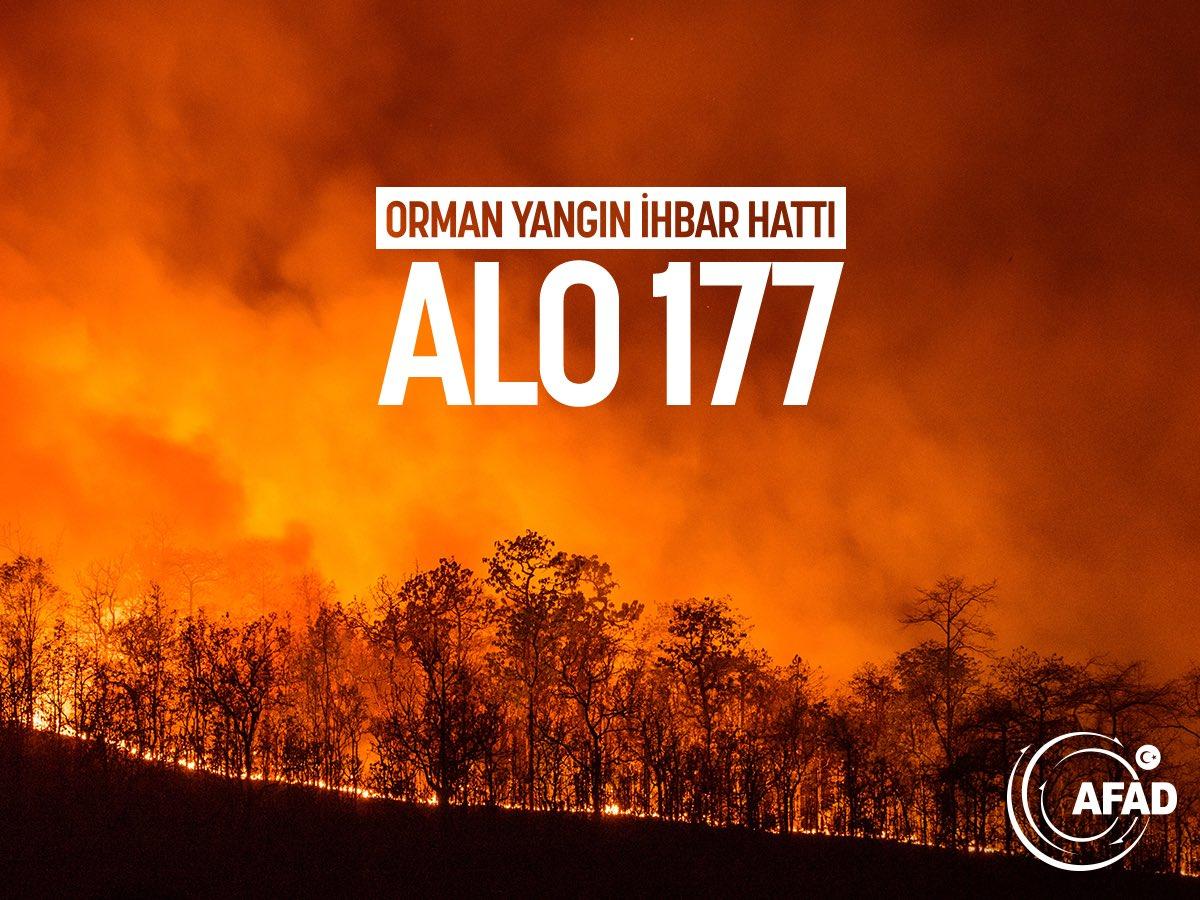 Orman Yangını, Orman Yangını ihbar hattı, Orman Yangını nedir