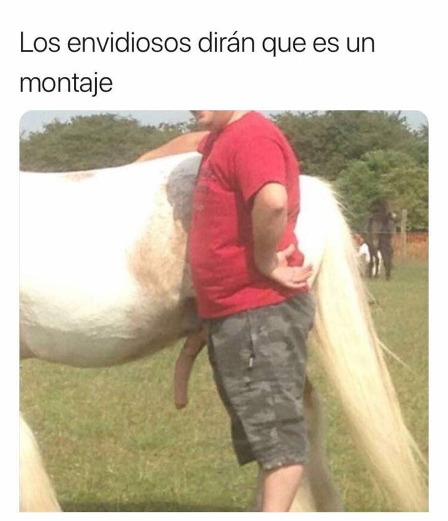 Muy Zorras Movil muyzorras (@muyzorrascom)   twitter