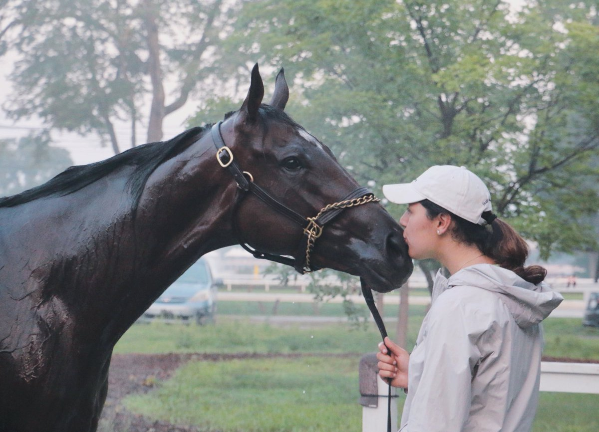 Today we run in three G1's. To have Wonder Gadot running in the #Travers is an incredible feat and kudos to the boss for getting our filly there. Good luck and safe trips  #TeamCasse #AwesomeSlew #Telekinesis #WonderGadot <br>http://pic.twitter.com/ISiwI28vPZ