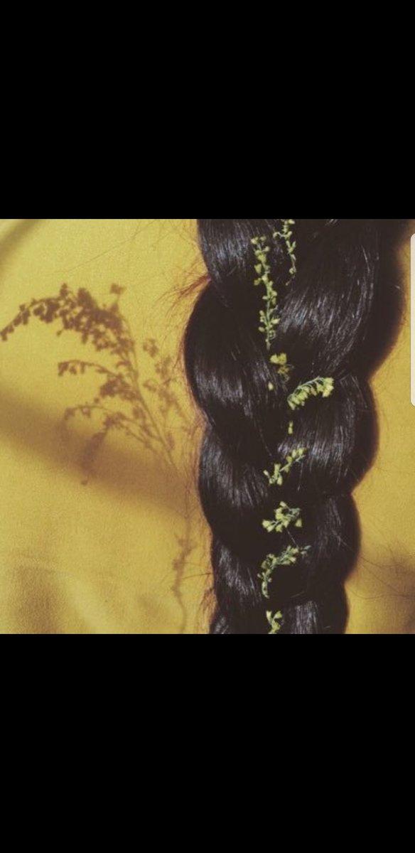 أحكي حـ ب On Twitter ذوات الشعر الطويل ملوك على عرش الفتنة ك الخيل هيبتها عندما يموج شعر ها بالهواء