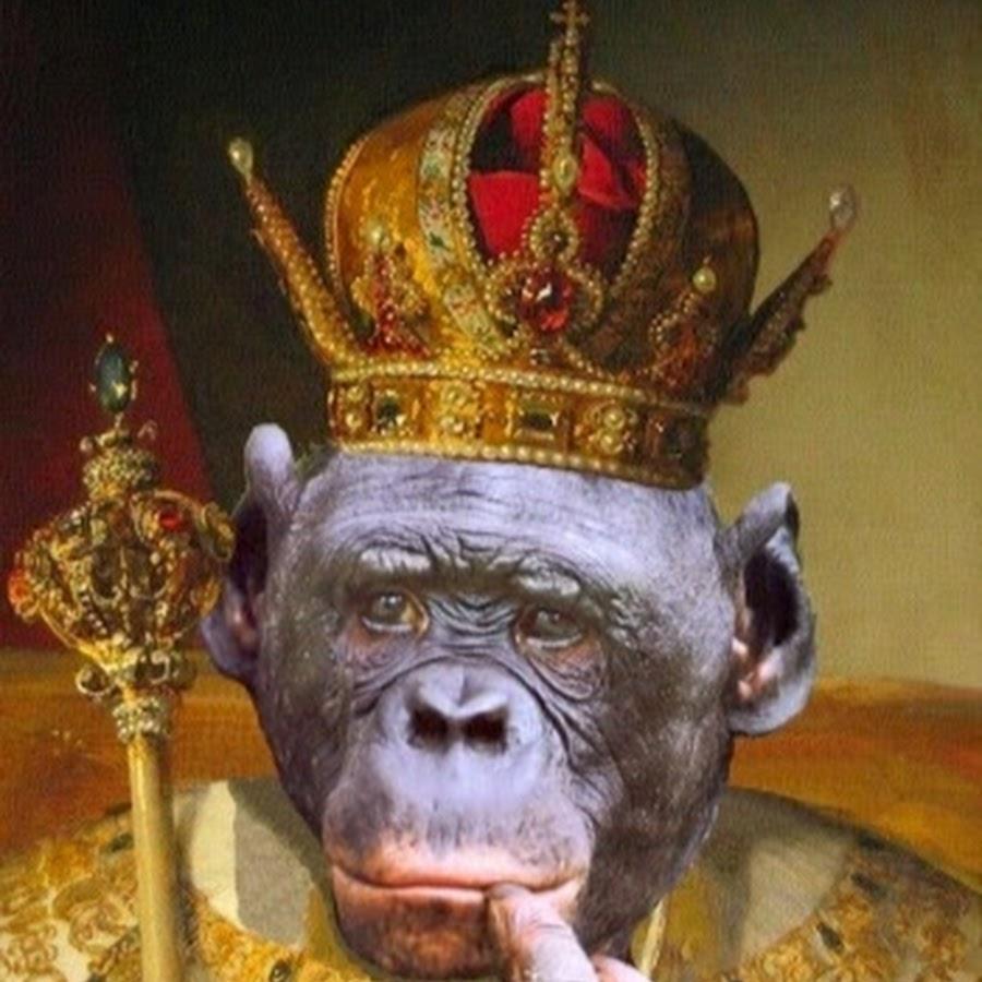 гибралтара купить фото приколы царя стихи, прикольные