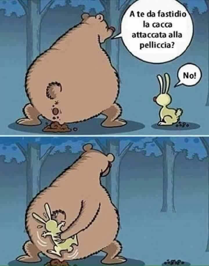 Un grande orso incontra un coniglietto e gli chiede: a te da fastidio la cacca attaccata al pelo? - lui: no! - allora l'orso lo acchiappa e si pulisce il didietro