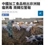 中国で感染症にかかった豚を加工して普通に販売していた!命に関わるヤバさだな…
