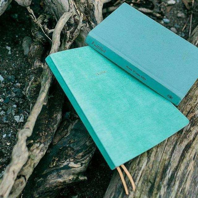 ebook Sustainable Success