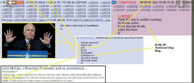 Image result for q anon predicts mccain death 30